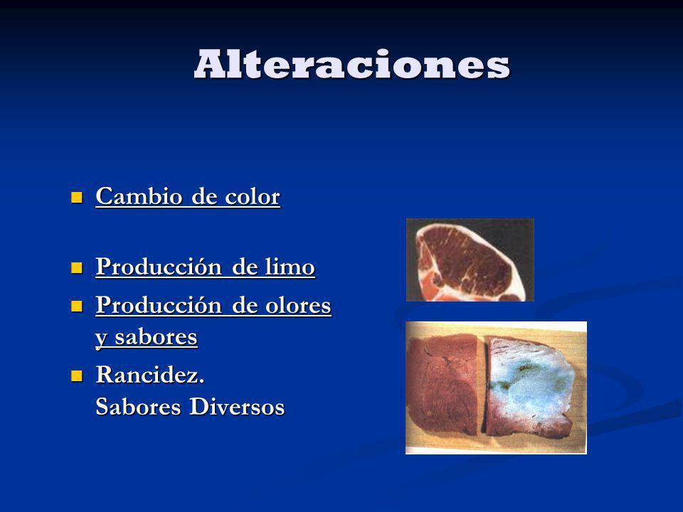 Cambio de color Cambio de color Producción de limo Producción de limo Producción de olores y sabores Producción de olores y sabores Rancidez. Sabores