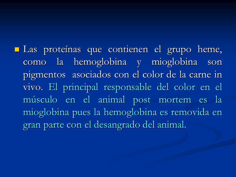 Las proteínas que contienen el grupo heme, como la hemoglobina y mioglobina son pigmentos asociados con el color de la carne in vivo. El principal res