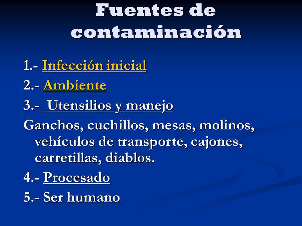 Fuentes de contaminación 1.- Infección inicial Infección inicialInfección inicial 2.- Ambiente Ambiente 3.- Utensilios y manejo Ganchos, cuchillos, me