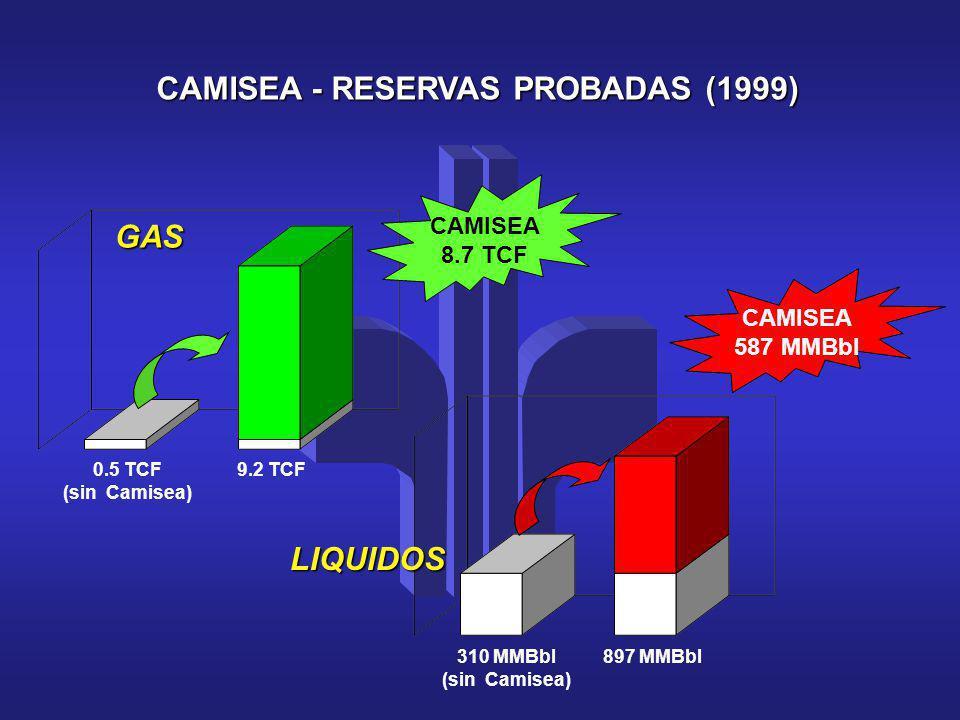 CAMISEA - RESERVAS PROBADAS (1999) GAS 0.5 TCF (sin Camisea) LIQUIDOS 310 MMBbl (sin Camisea) CAMISEA 8.7 TCF CAMISEA 587 MMBbl 9.2 TCF 897 MMBbl