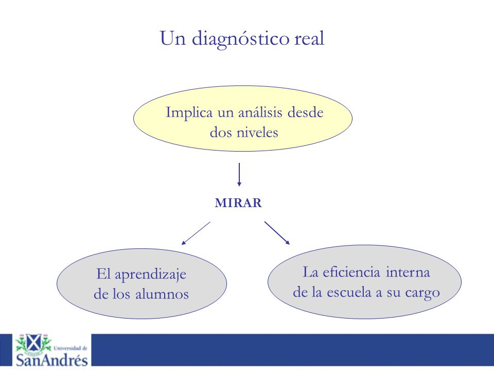 Implica un análisis desde dos niveles El aprendizaje de los alumnos La eficiencia interna de la escuela a su cargo MIRAR Un diagnóstico real