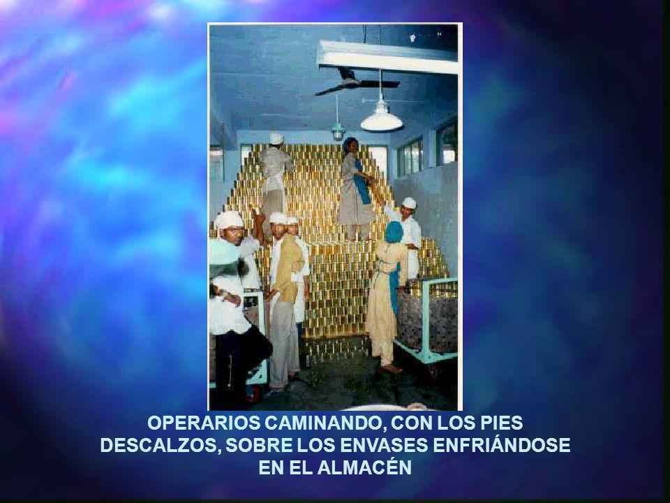 OPERARIOS CAMINANDO, CON LOS PIES DESCALZOS, SOBRE LOS ENVASES ENFRIÁNDOSE EN EL ALMACÉN