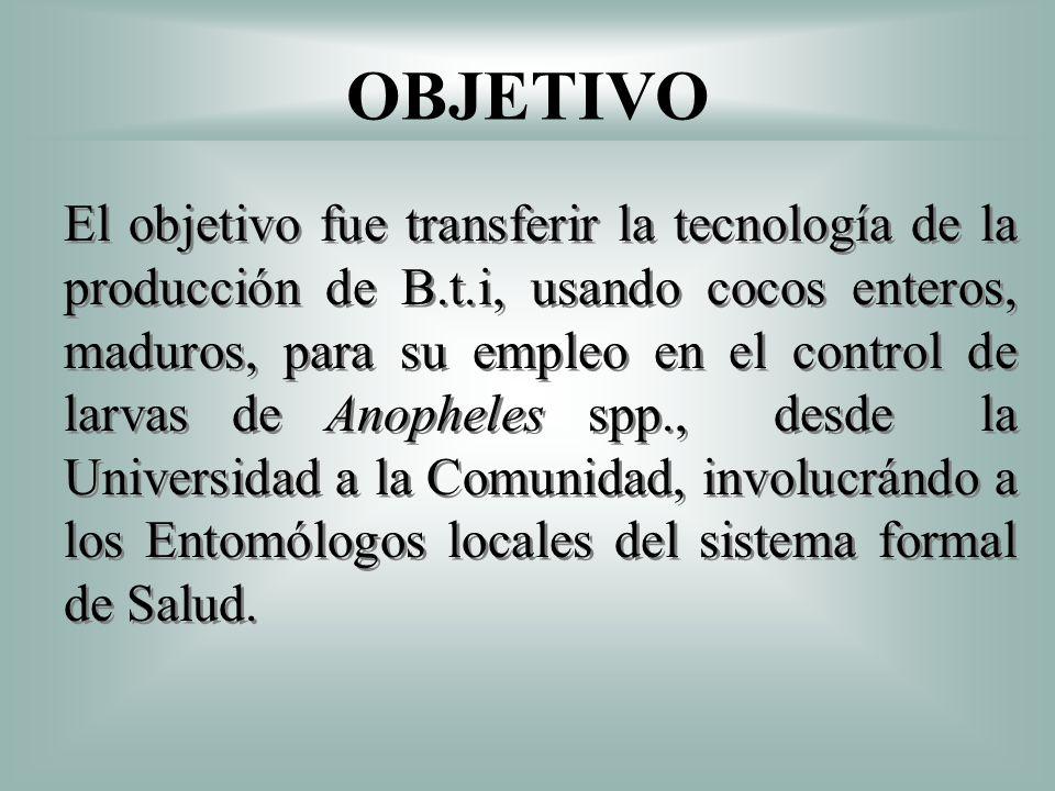 OBJETIVO El objetivo fue transferir la tecnología de la producción de B.t.i, usando cocos enteros, maduros, para su empleo en el control de larvas de