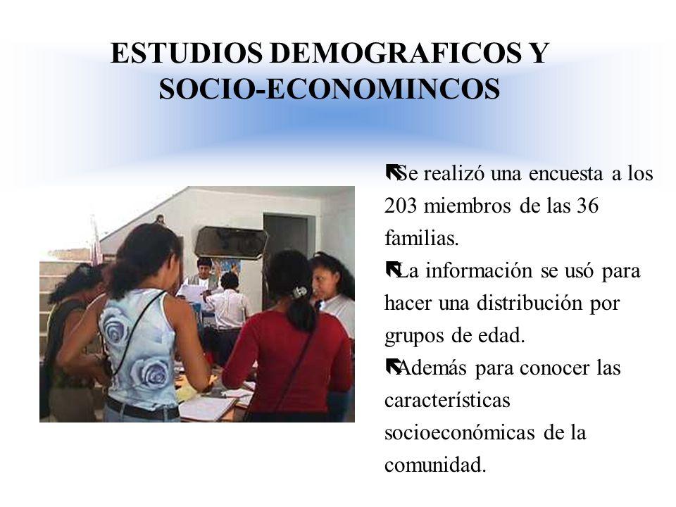 ESTUDIOS DEMOGRAFICOS Y SOCIO-ECONOMINCOS ëSe realizó una encuesta a los 203 miembros de las 36 familias. ëLa información se usó para hacer una distri