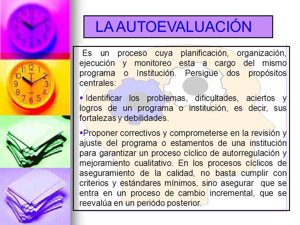 Es un proceso cuya planificación, organización, ejecución y monitoreo esta a cargo del mismo programa o Institución.