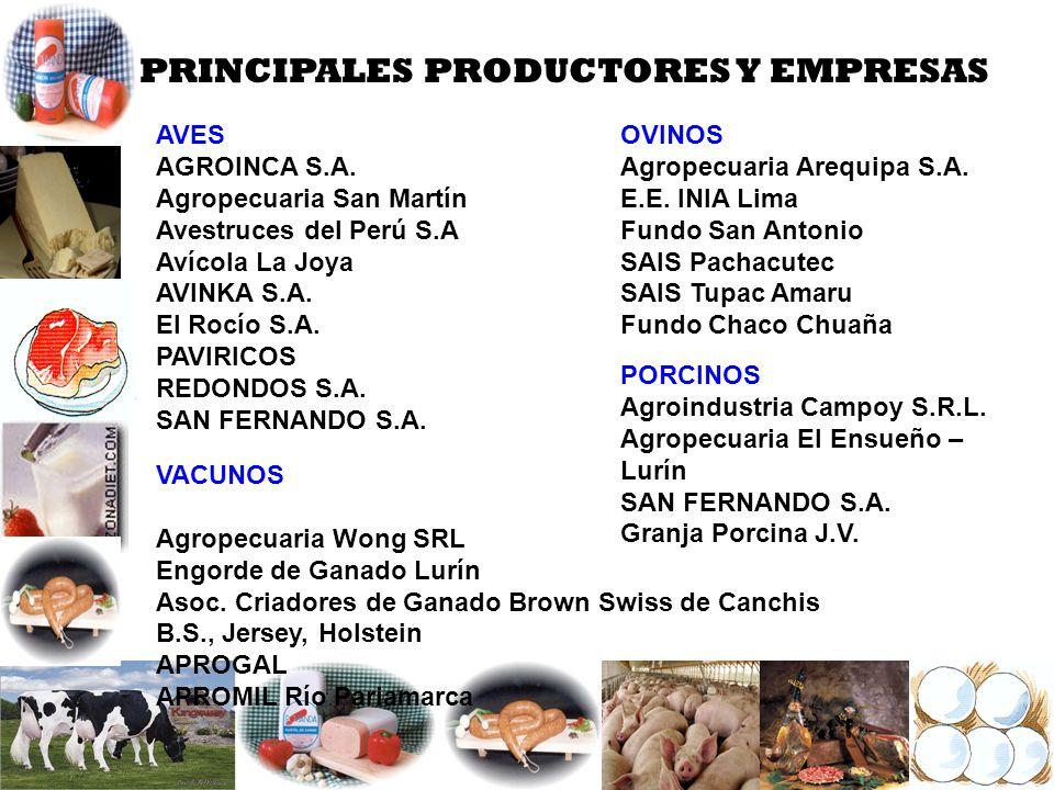 PRINCIPALES PRODUCTORES Y EMPRESAS AVES AGROINCA S.A. Agropecuaria San Martín Avestruces del Perú S.A Avícola La Joya AVINKA S.A. El Rocío S.A. PAVIRI