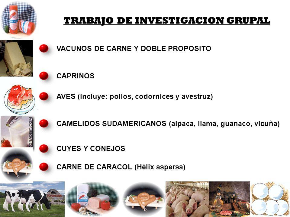 VACUNOS DE CARNE Y DOBLE PROPOSITO CAPRINOS AVES (incluye: pollos, codornices y avestruz) CAMELIDOS SUDAMERICANOS (alpaca, llama, guanaco, vicuña) CUY