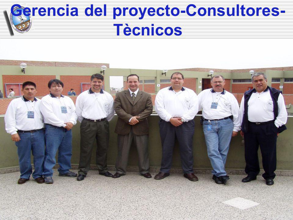 Gerencia del proyecto-Consultores- Tècnicos