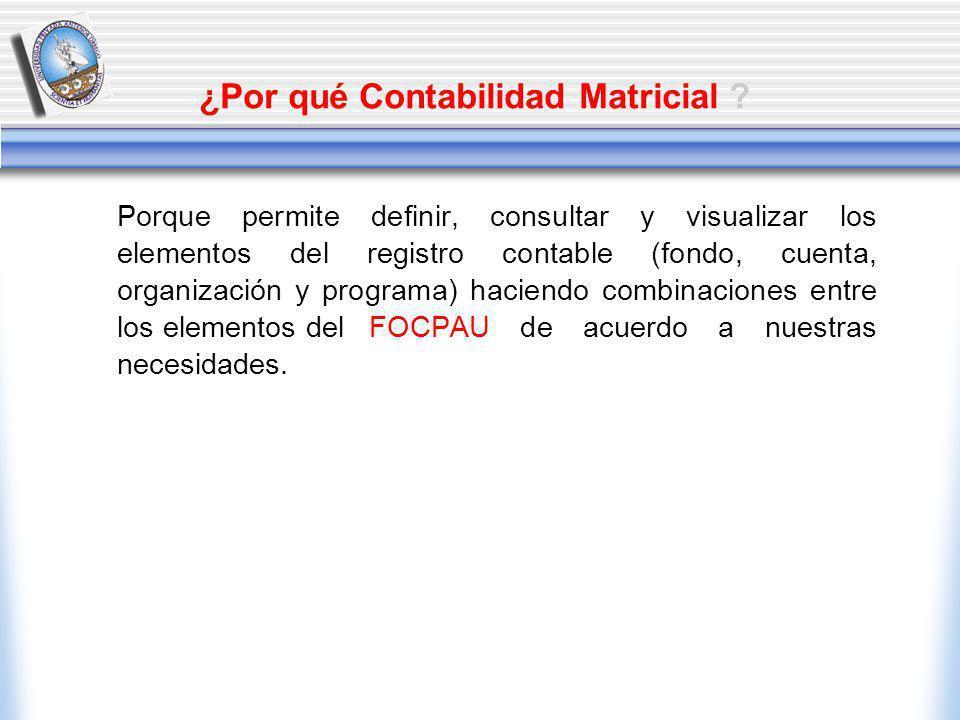Porque permite definir, consultar y visualizar los elementos del registro contable (fondo, cuenta, organización y programa) haciendo combinaciones entre los elementos del FOCPAU de acuerdo a nuestras necesidades.