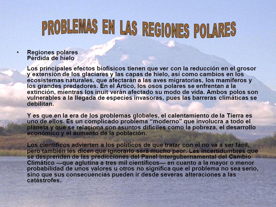 Regiones polares Pérdida de hielo Los principales efectos biofísicos tienen que ver con la reducción en el grosor y extensión de los glaciares y las c