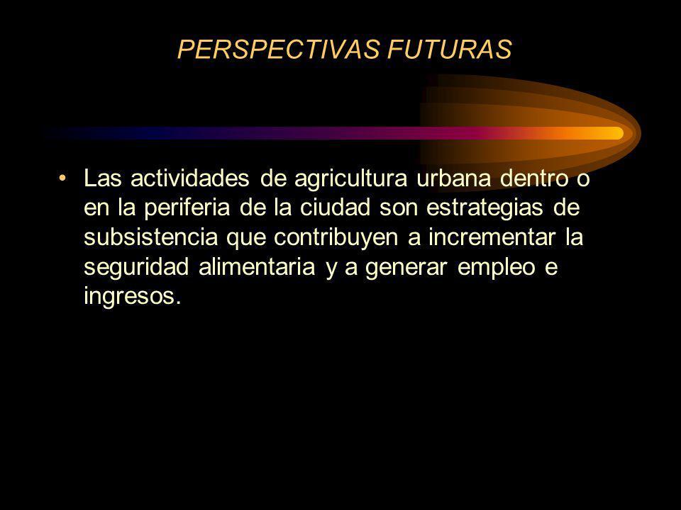 PERSPECTIVAS FUTURAS Las actividades de agricultura urbana dentro o en la periferia de la ciudad son estrategias de subsistencia que contribuyen a incrementar la seguridad alimentaria y a generar empleo e ingresos.
