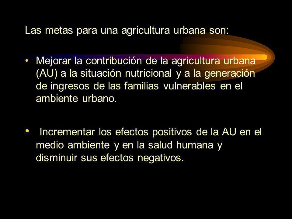 Las metas para una agricultura urbana son: Mejorar la contribución de la agricultura urbana (AU) a la situación nutricional y a la generación de ingresos de las familias vulnerables en el ambiente urbano.