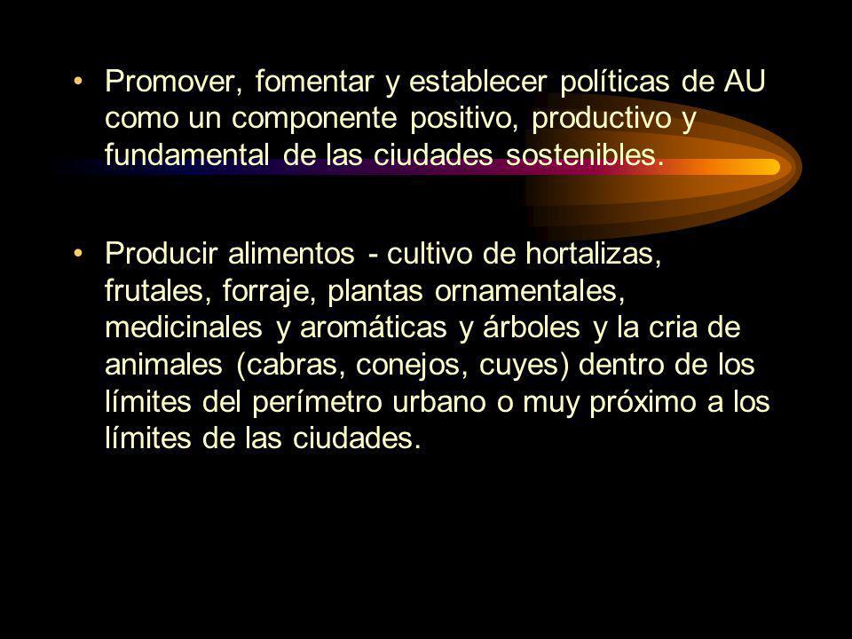 Promover, fomentar y establecer políticas de AU como un componente positivo, productivo y fundamental de las ciudades sostenibles.