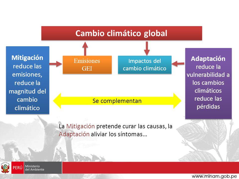 Algunas iniciativas de la cooperación multilateral Climate Investment Funds: establecido en 2008, constituye una instancia de articulación entre países donantes y receptores para la ejecución de iniciativas innovadoras en materia de cambio climático a través de la banca multilateral.