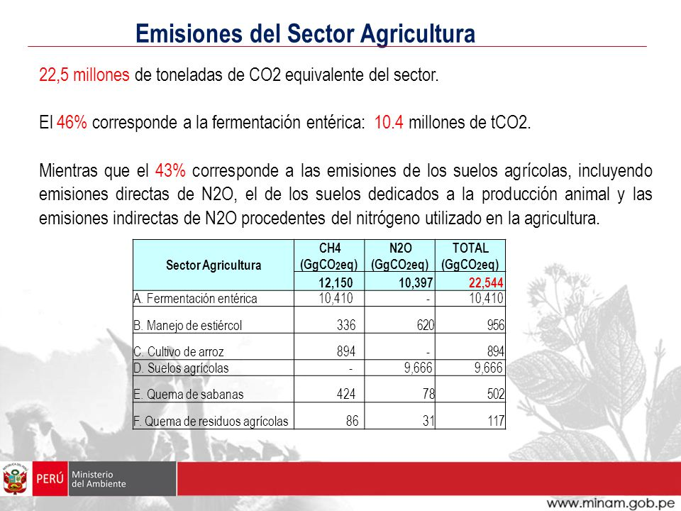 El Fondo para el Medio Ambiente Mundial (FMAM).