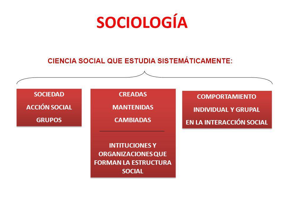 SOCIOLOGÍA CIENCIA SOCIAL QUE ESTUDIA SISTEMÁTICAMENTE: SOCIEDAD ACCIÓN SOCIAL GRUPOS SOCIEDAD ACCIÓN SOCIAL GRUPOS CREADAS MANTENIDAS CAMBIADAS INTIT