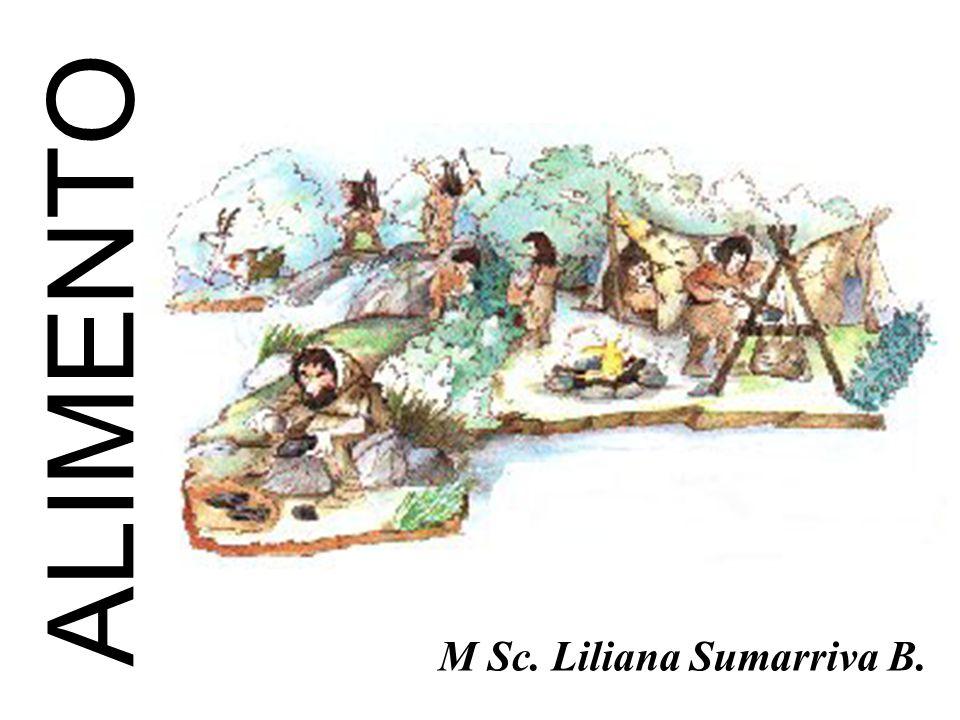 ALIMENTO M Sc. Liliana Sumarriva B.