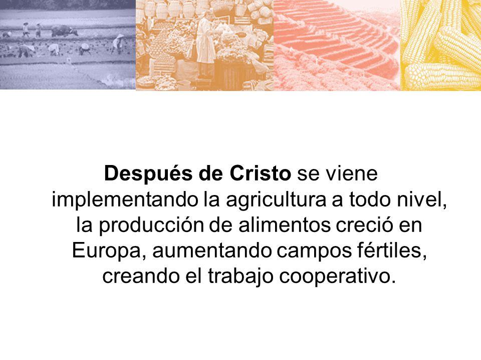 Después de Cristo se viene implementando la agricultura a todo nivel, la producción de alimentos creció en Europa, aumentando campos fértiles, creando el trabajo cooperativo.