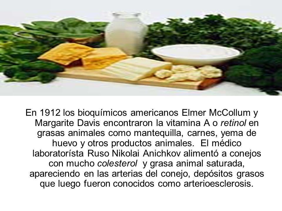 En 1912 los bioquímicos americanos Elmer McCollum y Margarite Davis encontraron la vitamina A o retinol en grasas animales como mantequilla, carnes, yema de huevo y otros productos animales.