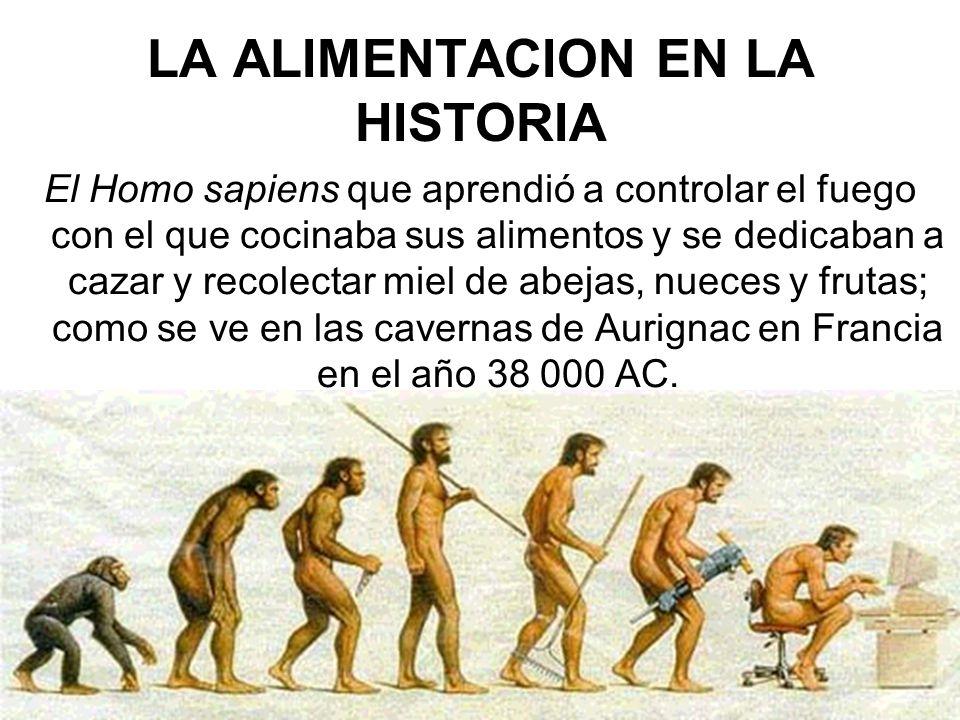 LA ALIMENTACION EN LA HISTORIA El Homo sapiens que aprendió a controlar el fuego con el que cocinaba sus alimentos y se dedicaban a cazar y recolectar miel de abejas, nueces y frutas; como se ve en las cavernas de Aurignac en Francia en el año 38 000 AC.