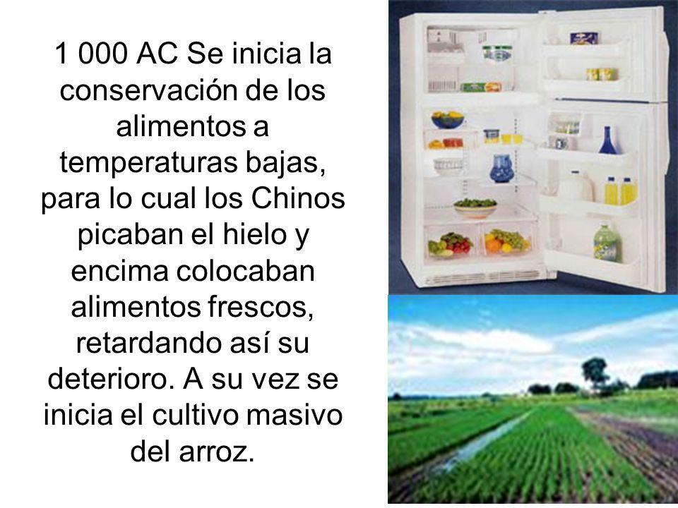 1 000 AC Se inicia la conservación de los alimentos a temperaturas bajas, para lo cual los Chinos picaban el hielo y encima colocaban alimentos frescos, retardando así su deterioro.