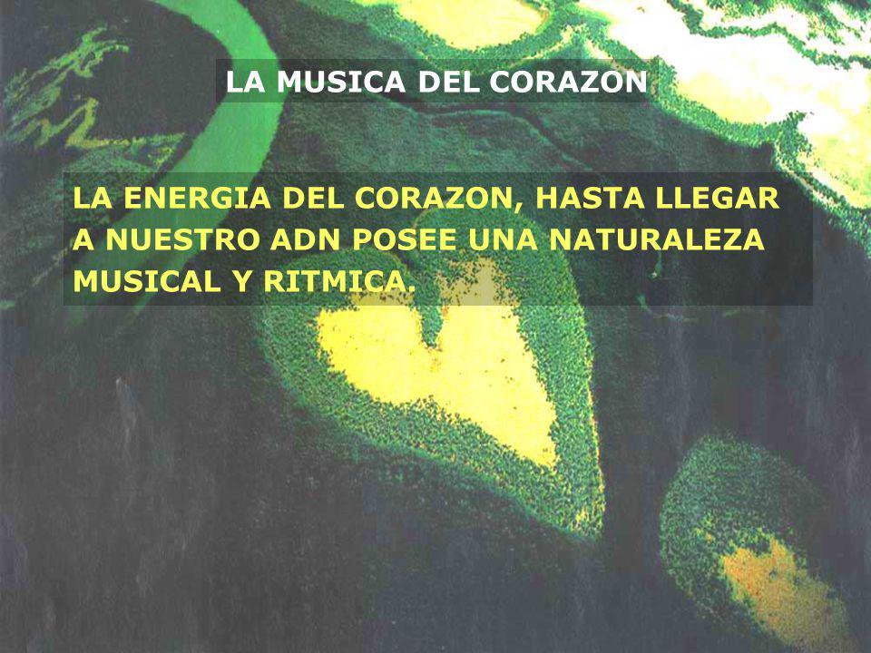 LA MUSICA DEL CORAZON LA ENERGIA DEL CORAZON, HASTA LLEGAR A NUESTRO ADN POSEE UNA NATURALEZA MUSICAL Y RITMICA.
