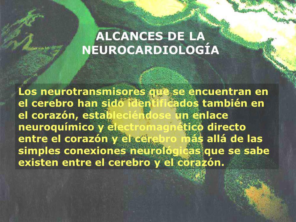 ALCANCES DE LA NEUROCARDIOLOGÍA Los neurotransmisores que se encuentran en el cerebro han sido identificados también en el corazón, estableciéndose un