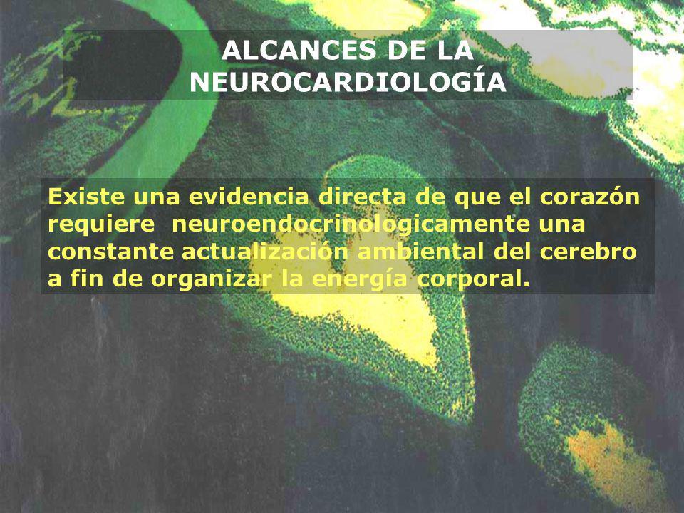 Existe una evidencia directa de que el corazón requiere neuroendocrinologicamente una constante actualización ambiental del cerebro a fin de organizar