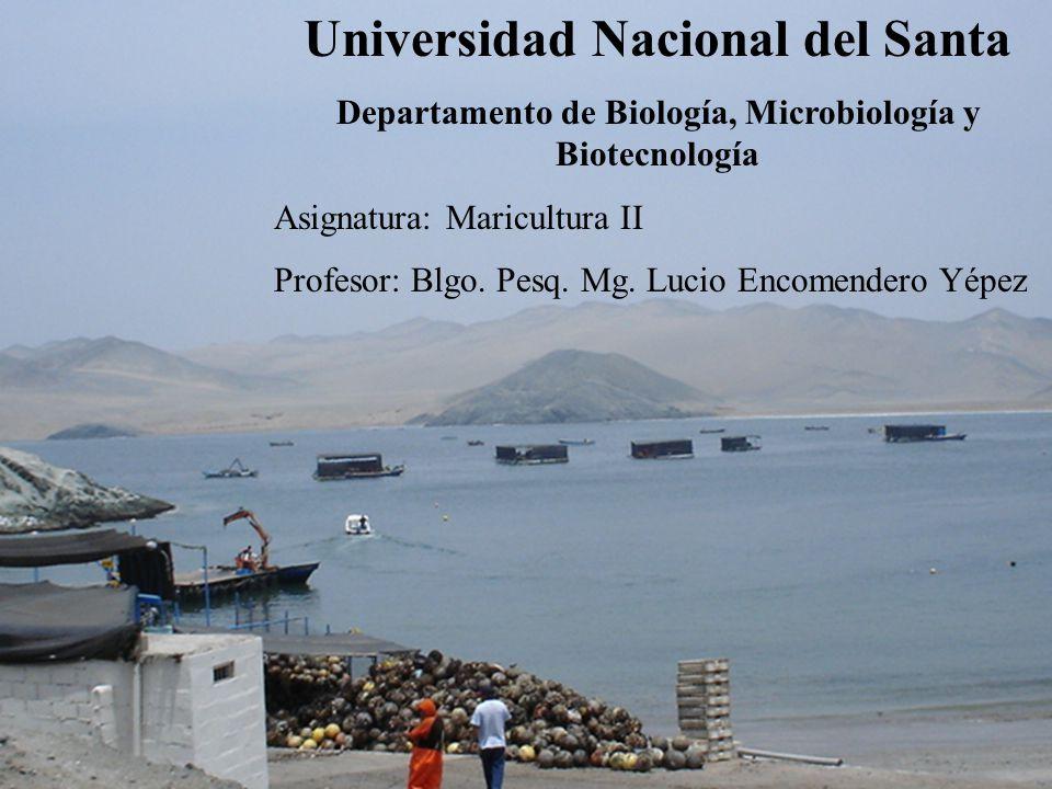 Universidad Nacional del Santa Departamento de Biología, Microbiología y Biotecnología Asignatura: Maricultura II Profesor: Blgo.