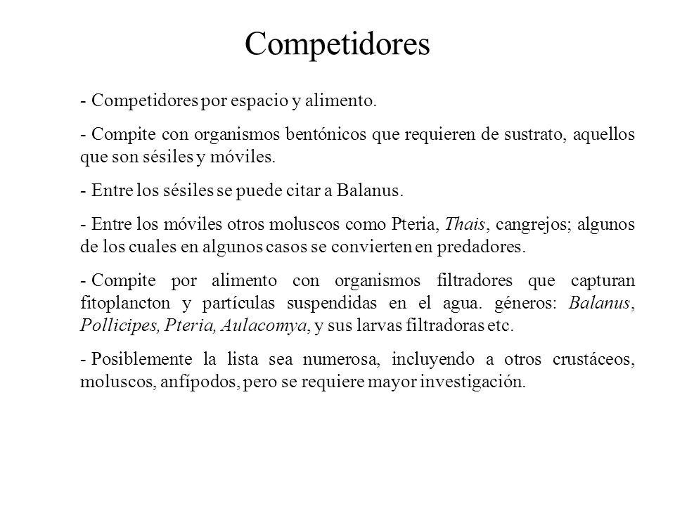 Competidores - Competidores por espacio y alimento.