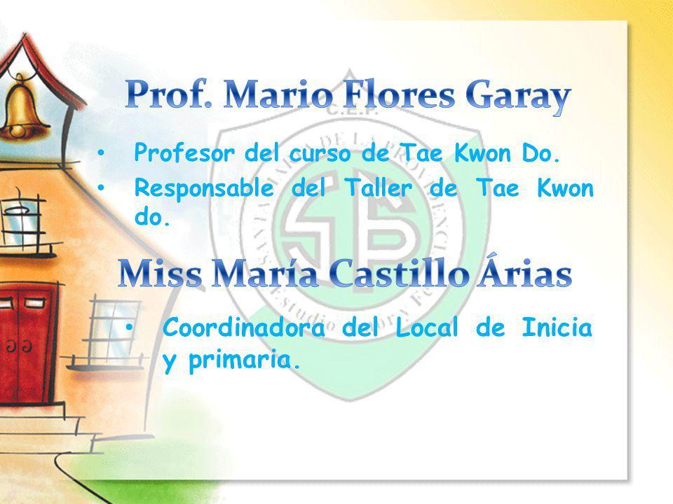 Profesor del curso de Tae Kwon Do. Responsable del Taller de Tae Kwon do. Coordinadora del Local de Inicia y primaria.