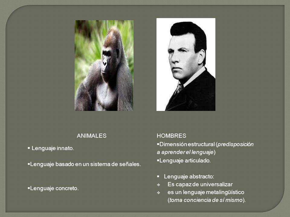 ANIMALESHOMBRES Lenguaje innato. Dimensión estructural (predisposición a aprender el lenguaje) Lenguaje basado en un sistema de señales. Lenguaje arti