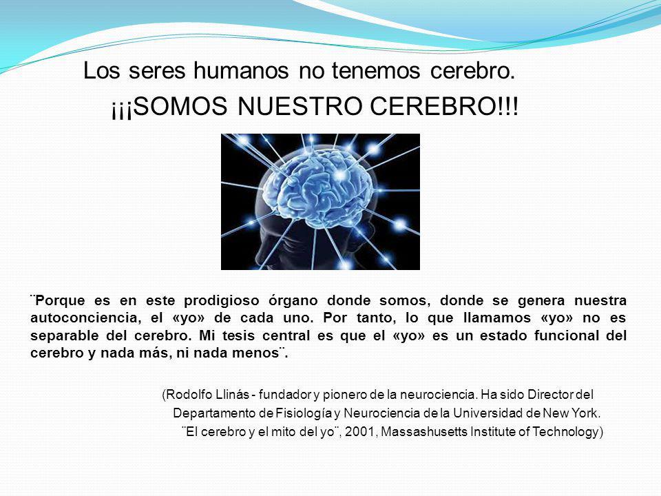 Los seres humanos no tenemos cerebro. ¡¡ ¡SOMOS NUESTRO CEREBRO!!! ¨Porque es en este prodigioso órgano donde somos, donde se genera nuestra autoconci
