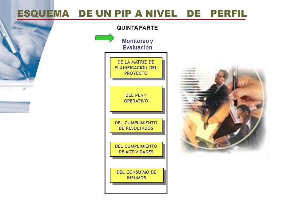 DEL PLAN OPERATIVO DE LA MATRIZ DE PLANIFICACIÓN DEL PROYECTO DEL CUMPLIMIENTO DE ACTIVIDADES DEL CUMPLIMIENTO DE RESULTADOS DEL CONSUIMO DE INSUMOS Q