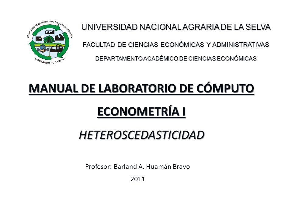 ESQUEMA Introducción / Causas de heteroscedasticidad Problemas con los estimadores MCO.