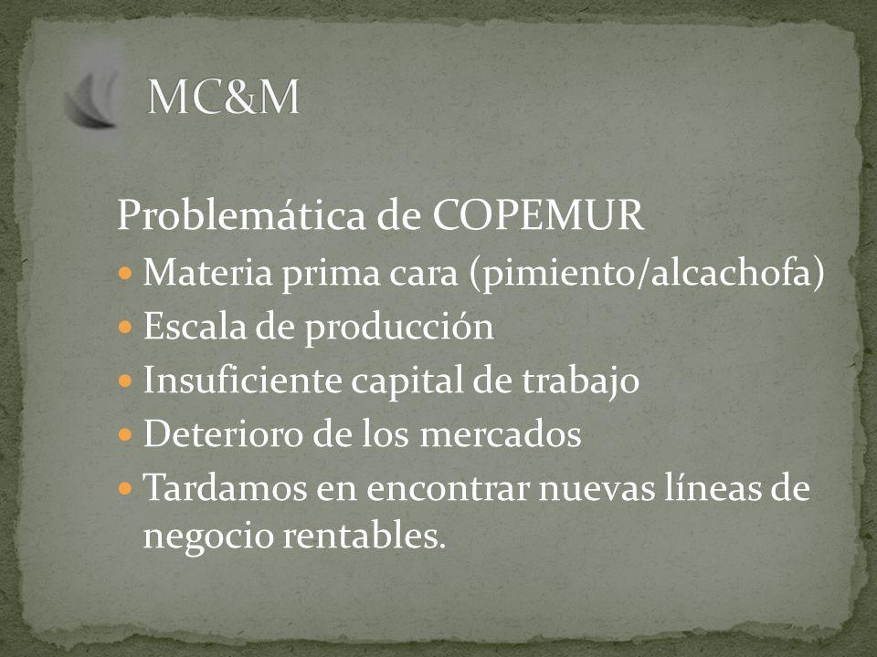 Problemática de COPEMUR Materia prima cara (pimiento/alcachofa) Escala de producción Insuficiente capital de trabajo Deterioro de los mercados Tardamos en encontrar nuevas líneas de negocio rentables.