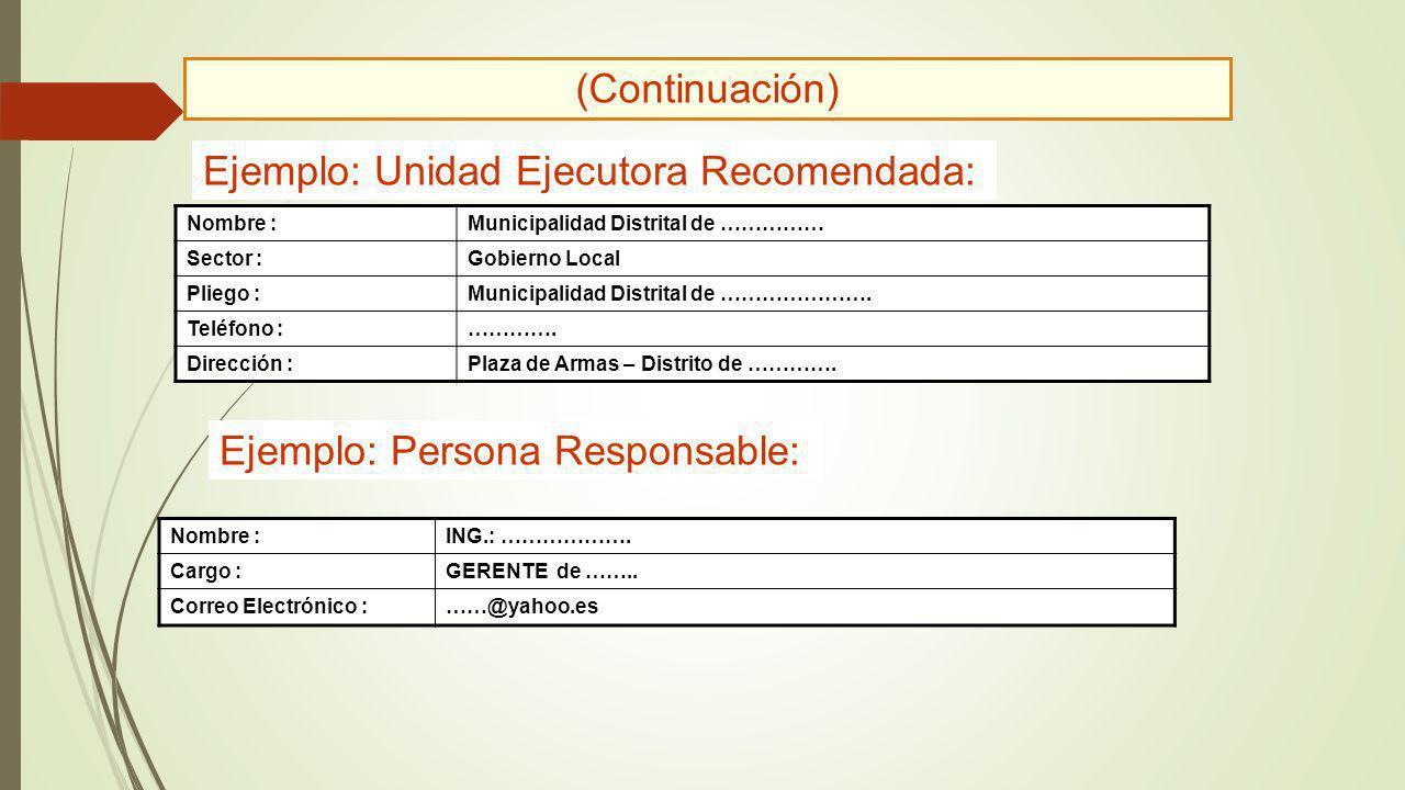 Nombre :Municipalidad Distrital de …………… Sector :Gobierno Local Pliego :Municipalidad Distrital de …………………. Teléfono :…………. Dirección :Plaza de Armas
