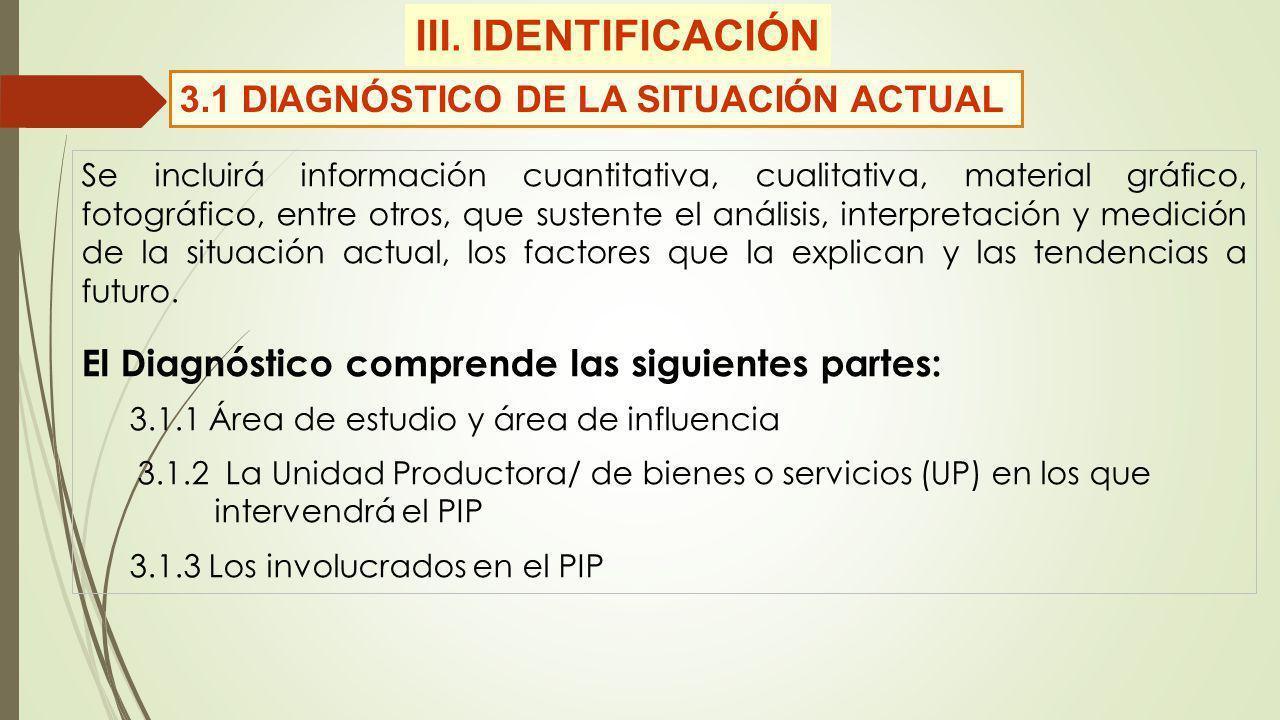 III. IDENTIFICACIÓN 3.1 DIAGNÓSTICO DE LA SITUACIÓN ACTUAL Se incluirá información cuantitativa, cualitativa, material gráfico, fotográfico, entre otr