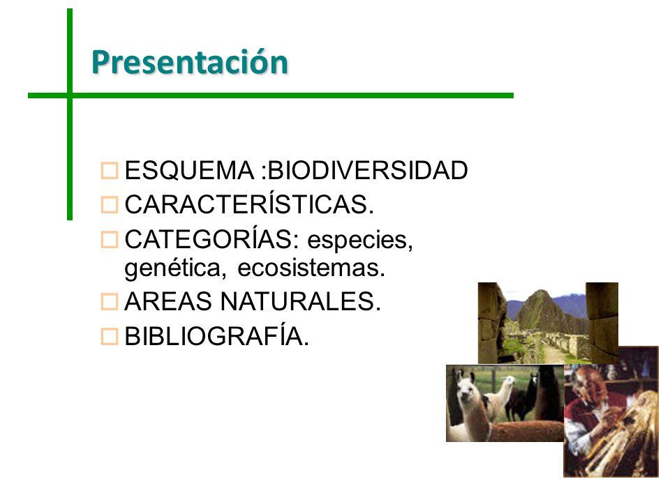 Presentación o ESQUEMA :BIODIVERSIDAD o CARACTERÍSTICAS. o CATEGORÍAS: especies, genética, ecosistemas. o AREAS NATURALES. o BIBLIOGRAFÍA.