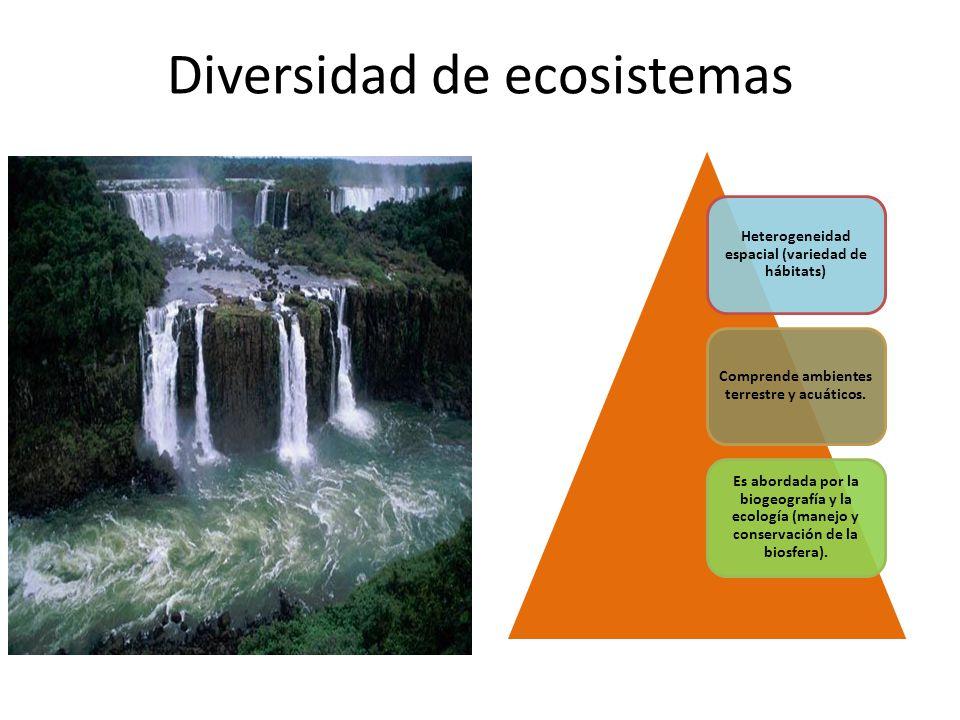Diversidad de ecosistemas Heterogeneidad espacial (variedad de hábitats) Comprende ambientes terrestre y acuáticos. Es abordada por la biogeografía y