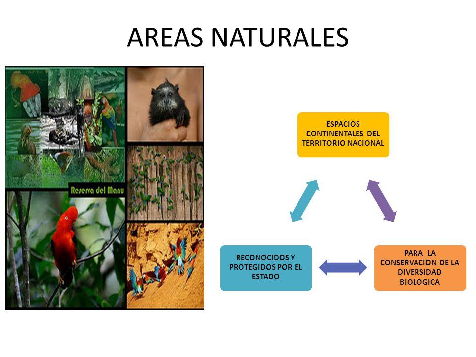 AREAS NATURALES ESPACIOS CONTINENTALES DEL TERRITORIO NACIONAL PARA LA CONSERVACION DE LA DIVERSIDAD BIOLOGICA RECONOCIDOS Y PROTEGIDOS POR EL ESTADO