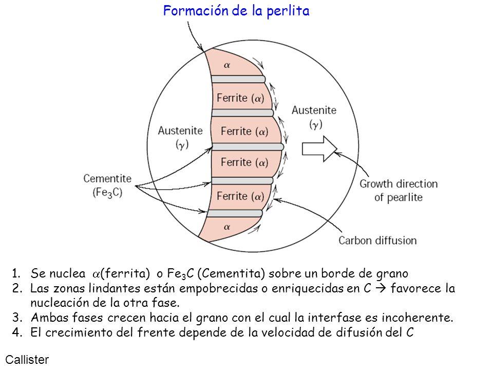 Formación de la perlita Callister 1.Se nuclea (ferrita) o Fe 3 C (Cementita) sobre un borde de grano 2.Las zonas lindantes están empobrecidas o enriqu