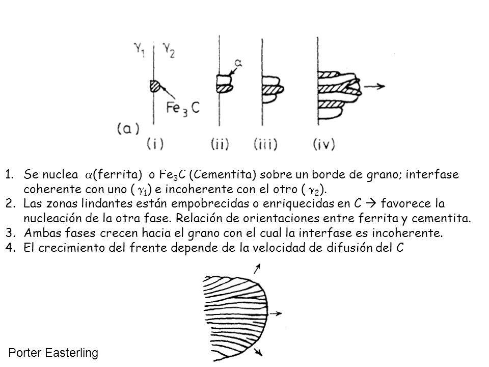 1.Se nuclea (ferrita) o Fe 3 C (Cementita) sobre un borde de grano; interfase coherente con uno ( 1 ) e incoherente con el otro ( 2 ). 2.Las zonas lin