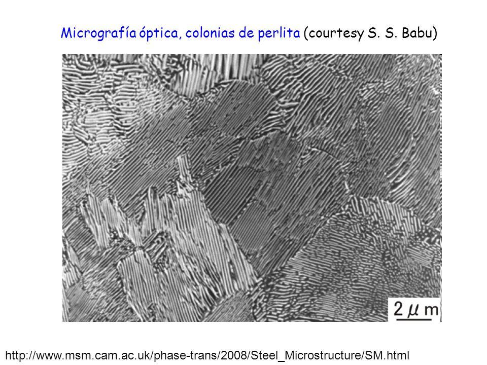 http://www.msm.cam.ac.uk/phase-trans/2008/Steel_Microstructure/SM.html Micrografía óptica, colonias de perlita (courtesy S. S. Babu)