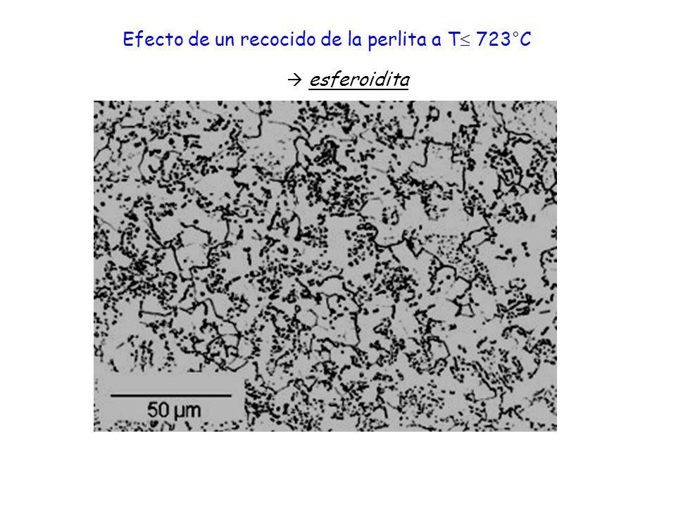 esferoidita Efecto de un recocido de la perlita a T 723°C