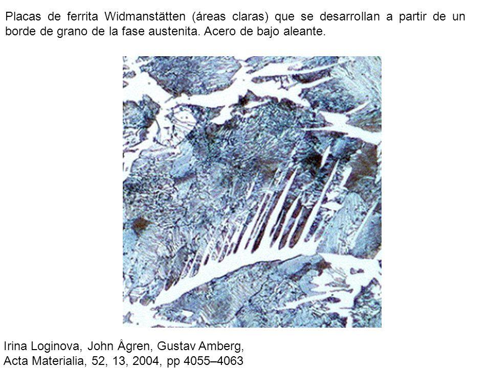 Placas de ferrita Widmanstätten (áreas claras) que se desarrollan a partir de un borde de grano de la fase austenita. Acero de bajo aleante. Irina Log