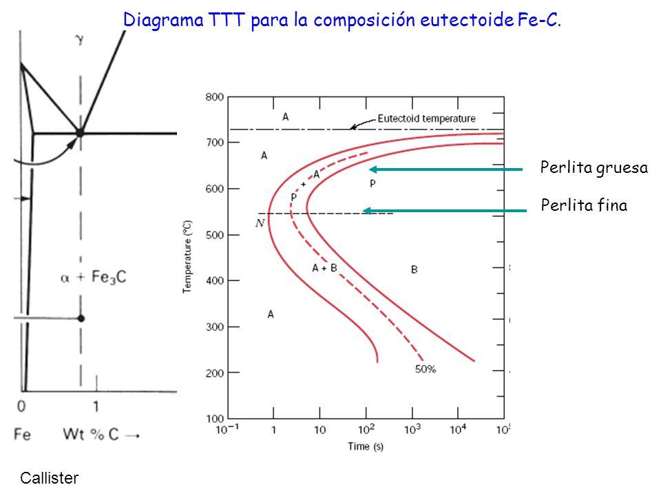 Diagrama TTT para la composición eutectoide Fe-C. Callister Perlita gruesa Perlita fina