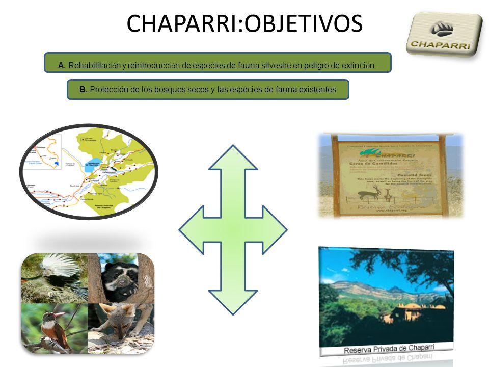 CHAPARRI:OBJETIVOS A. Rehabilitaci ó n y reintroducci ó n de especies de fauna silvestre en peligro de extinci ó n. B. Protección de los bosques secos