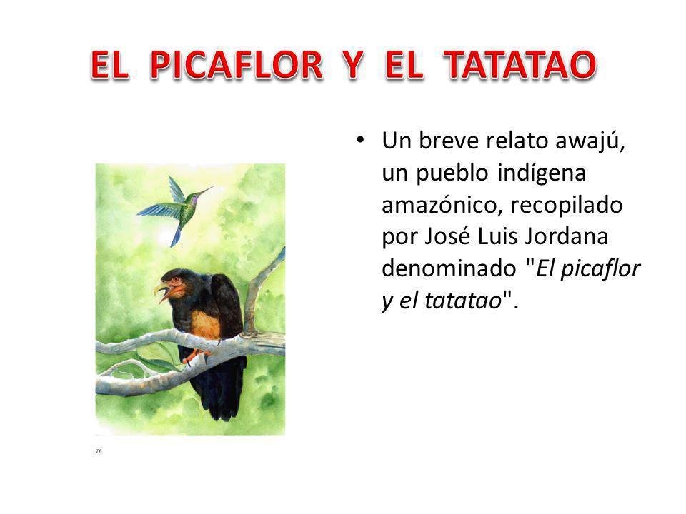 Un breve relato awajú, un pueblo indígena amazónico, recopilado por José Luis Jordana denominado El picaflor y el tatatao .