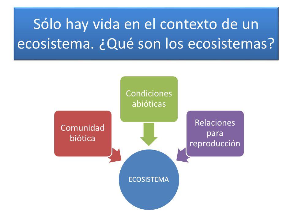 Sólo hay vida en el contexto de un ecosistema.¿Qué son los ecosistemas.